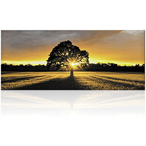 Large Black and White Tree in Sunset Photography Canvas Prints Home Wall Decor Nature Scenery Wall Art (Sunshine Tree) (Black White Art And Canvas Large)