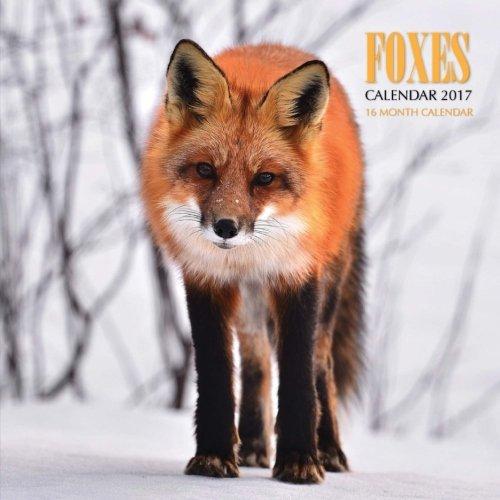 Download Foxes Calendar 2017: 16 Month Calendar pdf epub