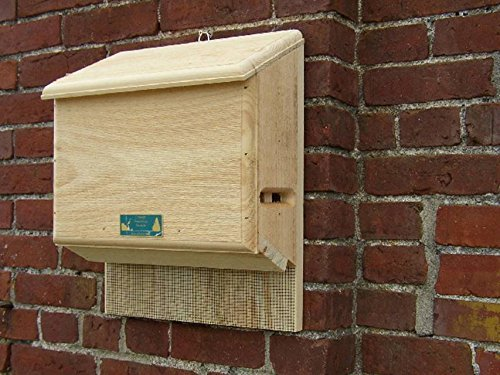 Coveside Conservation Products Sunshine's Bat Hse - large