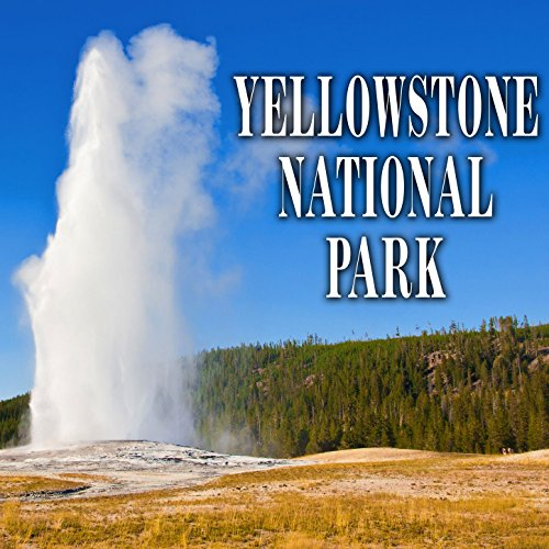 West Thumb Geyser Basin Fast Thick Bubbling and Spurting ()