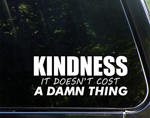 Kindness Doesnt Cost Damn Thing product image