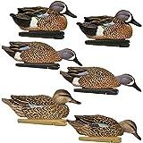 Avian-X Top Flight Blue Winged Teal Duck Decoys 6 Pack