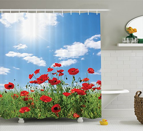 Ambesonne Poppy Decor Collection, Red Poppies on Green Field Grassy Sunshine Rays Wild Plants Herbs Botany Image, Polyester Fabric Bathroom Shower Curtain Set with Hooks, Blue Red Green - Poppy Field Gift