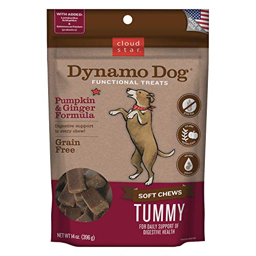 Cloud Star Dynamo Dog Functional Soft Chews: Tummy - Pumpkin & Ginger - 14 oz ()