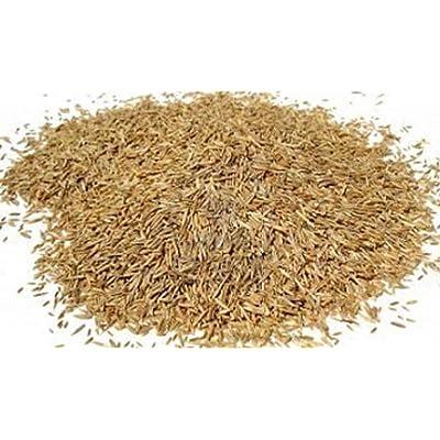 Barenbrug 83625 25 lbs BB Shady Grass Seed Mixture : Garden & Outdoor