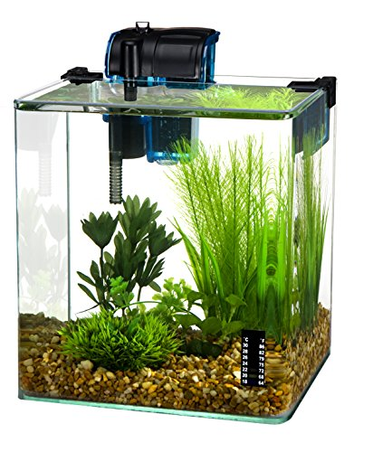Penn Plax Vertex Aquarium Kit for Fish and Shrimp with Filter, Thermometer, Desktop Size 2.7 ()