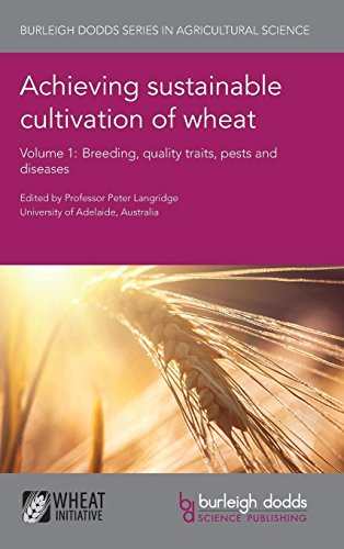 Achieving sustainable cultivation of wheat Volume 1: Breeding, quality traits, pests and diseases (Burleigh Dodds Series in Agricultural Science)