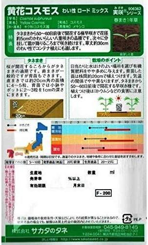 サカタのタネ 黄花コスモス わい性 ロードミックス