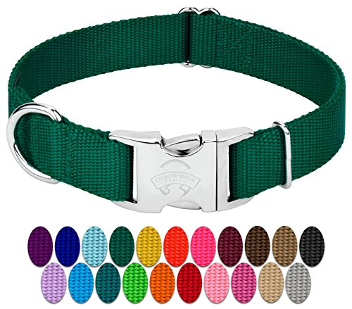 Country Brook Petz | Premium Nylon Dog Collar with Metal Buckle (Small, 3/4 Wide, Green)