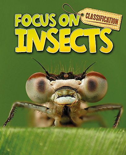 Insects (Classification: Focus on)