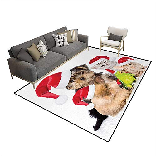 Carpet,Xmas Crew Cat Dog Bird Mouse and Rabbit Bunny for sale  Delivered anywhere in USA