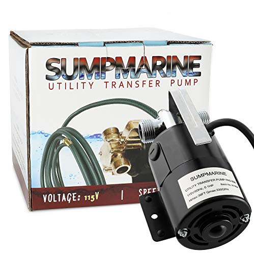 Hot water pump for pool