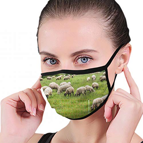 Flock Sheep Grazing On Pasture Agriculture Industrial Washable Reusable Mouth Mask Cotton Anti Dust Half Face Mouth Mask For Men Women Dustproof With Adjustable Ear Loops from Cool pillow