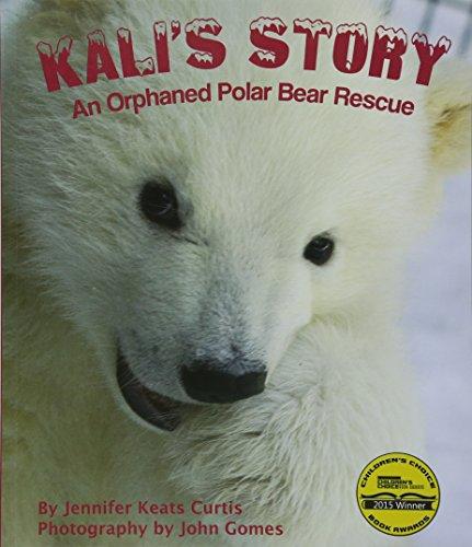 Kali's Story: An Orphaned Polar Bear Rescue