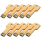 FEBNISCTE 10 Bulk Pack 1GB Gold Key USB2.0 Flash Pen Drive