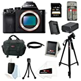 Sony ILCE7/B ILCE-7B ILCE7B 24.3 MP a7 Full-Frame Interchangeable Digital Lens Camera (Body Only) with Sony 64GB Class 10 SD Card + Replacement Battery & Charger for NP-FW50 + System Case Accessory Kit
