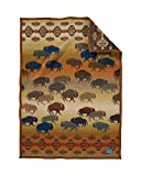 Pendleton Prairie Rush Hour Muchacho Wool Baby Blanket, Brown, One Size