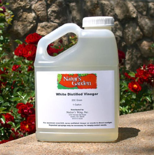 200-grain-vinegar-1-gal