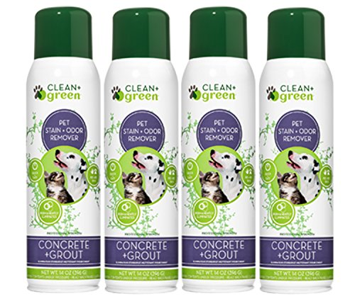 (Concrete and Grout Pet Stain Odor Remover, Deodorizer for Dogs and Cats, 14 Ounce)