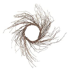 Darice 2814-76 Twig Sunburst Natural Birch, 14 inches Wreath 38