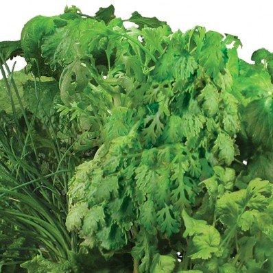 Asian Herbs Seed Pod Kit for Aerogarden (7-pod) by AeroGrow