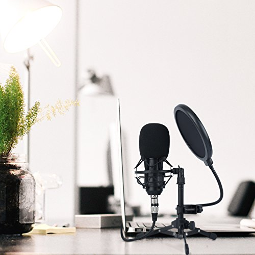 ZINGYOU ZY-801 Professional Studio Microphone, Desktop Computer Cardioid Condenser Mic with Tripod for PC Recording, Broadcasting (Black) by ZINGYOU (Image #6)
