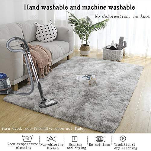 GOOVI Area Rugs Soft Fluffy Modern Home Decor Washable Non-Slip Carpet for Bedroom, Living Room, Boys Room, Girls Room, Play Room (5\' 3\