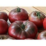 9GreenBox Cherokee Purple Tomato 15 Seeds - Heirloom