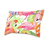 Double Sided Colorful Tropical Flamingo and Palm Tree Summertime Beach Cotton Velvet Pillowcase Rectangle 20 x 30 Inch Covers With Zipper Standard for Bed