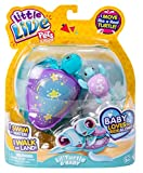 Little Live Pets Lil' Swimstar Turtle - Series 4 - Sky the Star Turtle & Baby