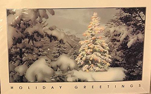 (25) Elegant Winter Wonderland Printable Cards and Envelopes - White Envelopes - Inkjet Laser and Copier (Winter Wonderland Printables)