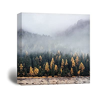 Stunning Picture, Classic Artwork, Square Pine Forest in The Fog