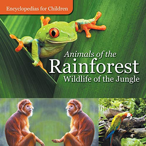 Rainforest Animal Pictures - Animals of the Rainforest |  Wildlife of the Jungle  | Encyclopedias for Children