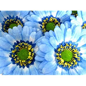 "(50) BIG Silk Blue Gerbera Daisy Flower Heads , Gerber Daisies - 3.5"" - Artificial Flowers Heads Fabric Floral Supplies Wholesale Lot for Wedding Flowers Accessories Make Bridal Hair Clips Headbands Dress 29"
