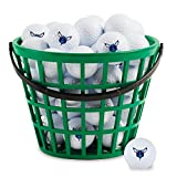 NBA Charlotte Hornets Golf Ball 36-Bucket