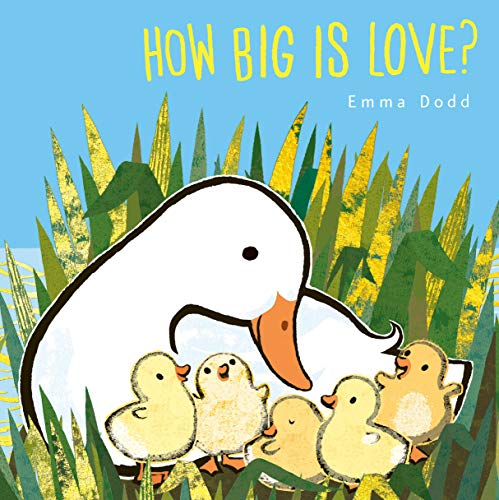 Book Cover: How Big Is Love?