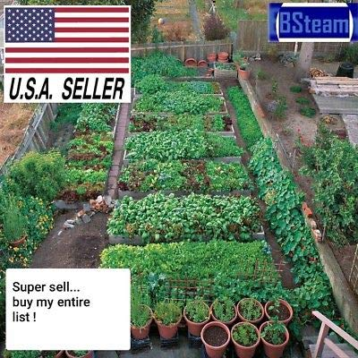 Buy My Ebay Entire List Organic Herb Fruits Vegetable Seed Variety Garden Pack !