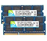 DUOMEIQI 8GB Kit (2X 4GB) DDR3 2RX8 PC3-10600S 1333MHz 204pin 1.5v SO-DIMM Notebook Laptop Memory RAM Module