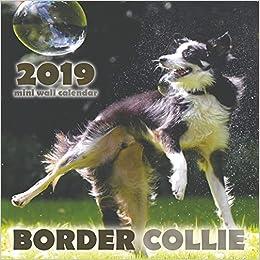 Border Collie 2019 Mini Wall Calendar Over The Wall Dogs