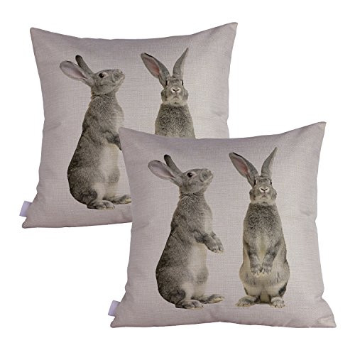 Queenie - 2 Pcs Wild Animals Decorative Pillowcase Cushion Cover for Sofa Throw Pillow Case 18 X 18 Inch 45 X 45 Cm, Set of 2 (Grey Rabbits) by Queenie