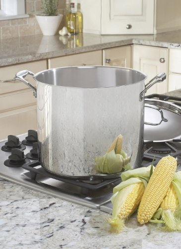 Cuisinart 766-26 Chef's Classic 12-Quart Stockpot with Cover by Cuisinart (Image #1)