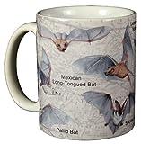 Bats of North America 11 Oz. Ceramic Coffee Mug Tea Cup