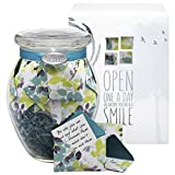 KindNotes Glass INSPIRATIONAL Keepsake Gift Jar of Messages for Him or Her Birthday, Thank you, Anniversary, Just Because - Calm Breeze