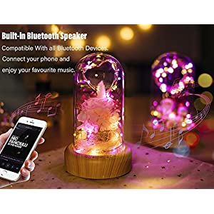 SWEETIME Enchanted Rose Lamp with Bluetooth Speaker, Real Flower LED Night Light, Preserved Pink Rose in Glass Dome, Gift for her in Birthday, Wedding, Valentine's Day.