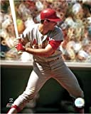 """Mike Shannon St. Louis Cardinals MLB Photo (Size: 8"""" x 10"""")"""