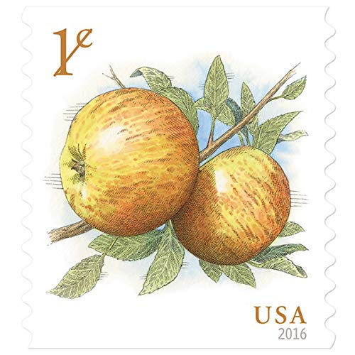 - Apples 24 x 1 Cent US Postage Stamps (4 Strips of 6 Stamps Each)