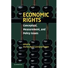 Economic Rights: Conceptual, Measurement, and Policy Issues