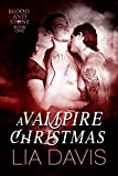 It's A Vampire Christmas (Blood and Stone Book 1)