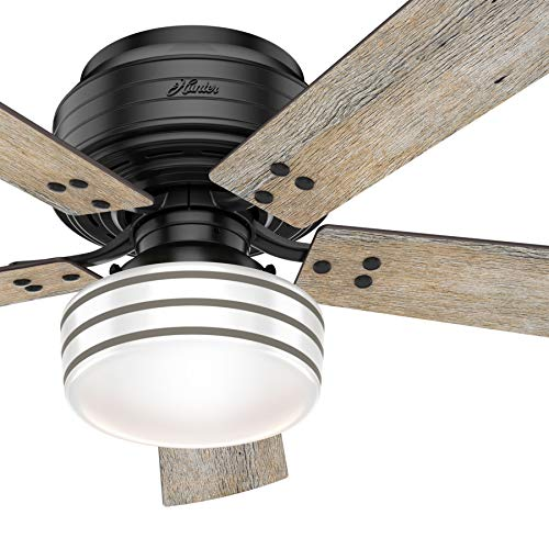 Hunter Fan 52 inch Casual Matte Black Finish Outdoor Ceiling Fan with LED Lights ()