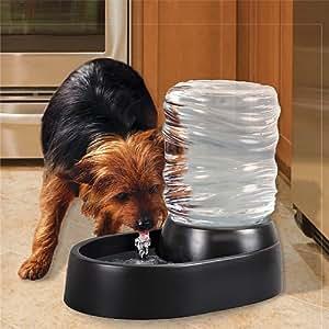 Pet Supplies : Pet Water Fountain Bubbling Bowl : Pet Self